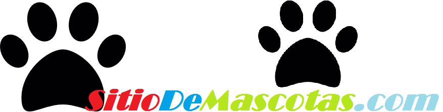 Sitio de Mascotas - Sitio Web especializado en el cuidado de mascotas, si los animales te gustan en Sitiodemascotas.com descubrirás todo sobre como criarlos